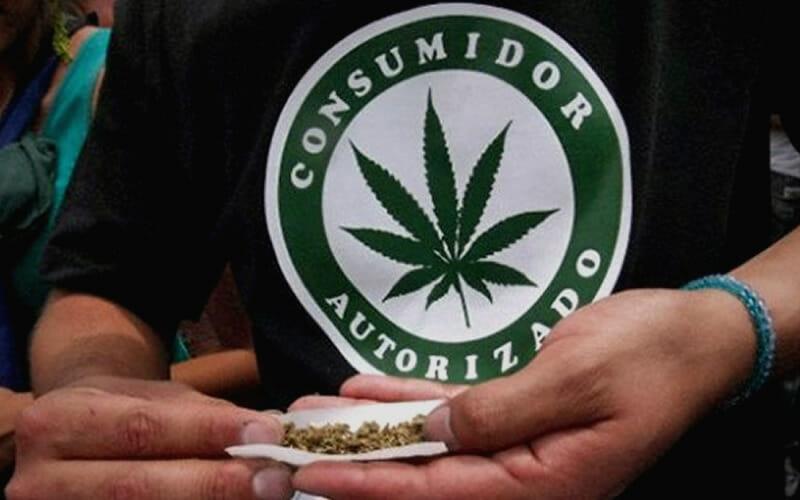 La legalización de la marihuana eleva la violencia en Uruguay